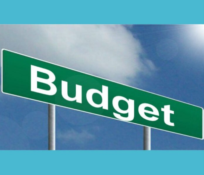 Budget Definition, Meaning And Type In Hindi